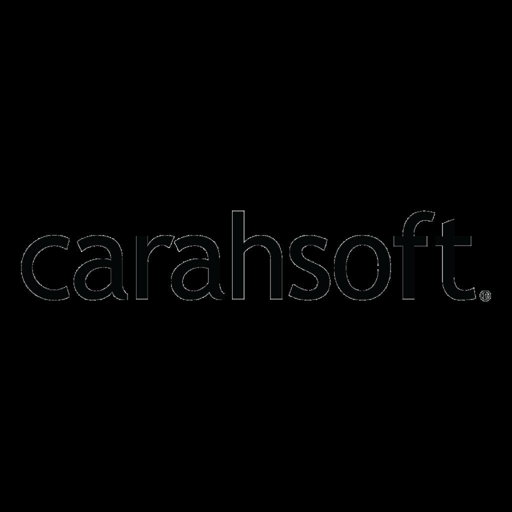 carahsoft Logo Partner